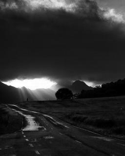 el_camino_hacia_la_luz.jpg