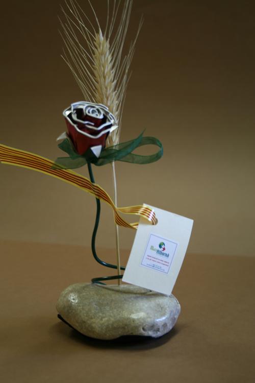 La nova rosa de Sant Jordi de Mas Albornà