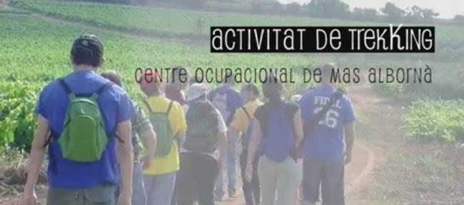 Activitats Centre Ocupacional