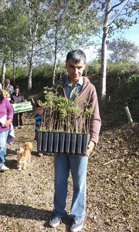 Plantada d'arbres a Vilafranca