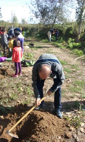 Plantada d'arbres a Vilafranca 2