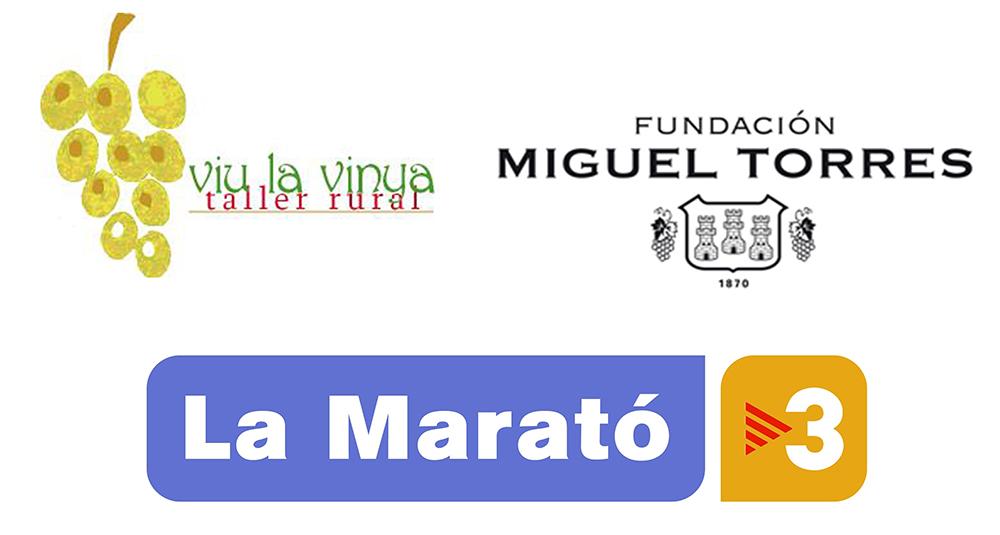 logos_marato_torres
