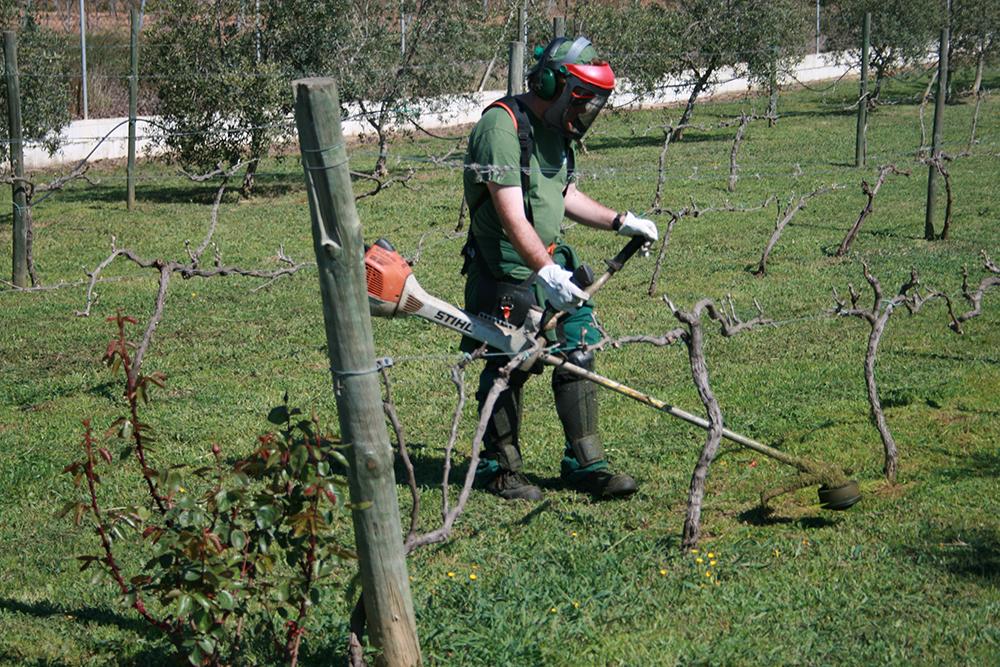 Continuarem fent la jardineria a Castellví