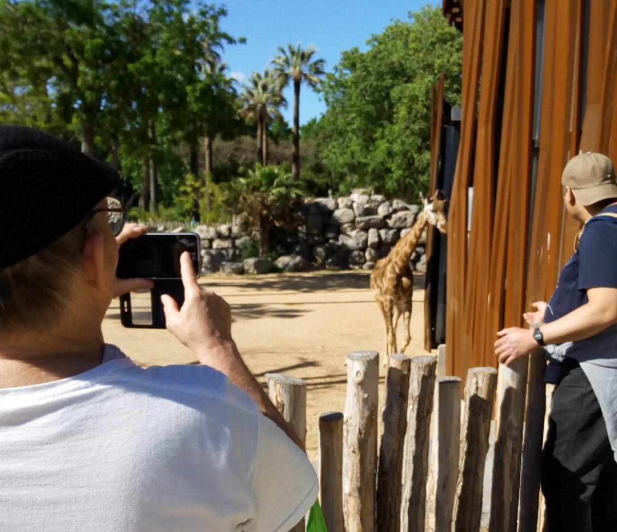 Un dia de zoo