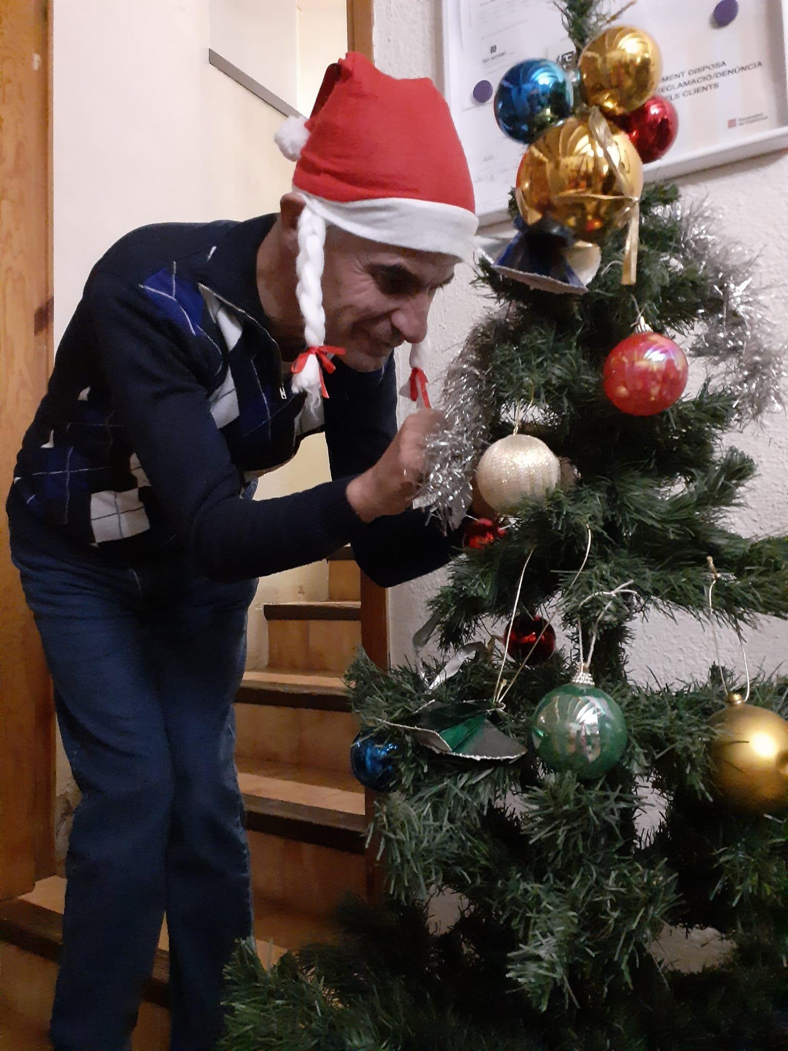 Decorem el Mas amb l'arbre de Nadal