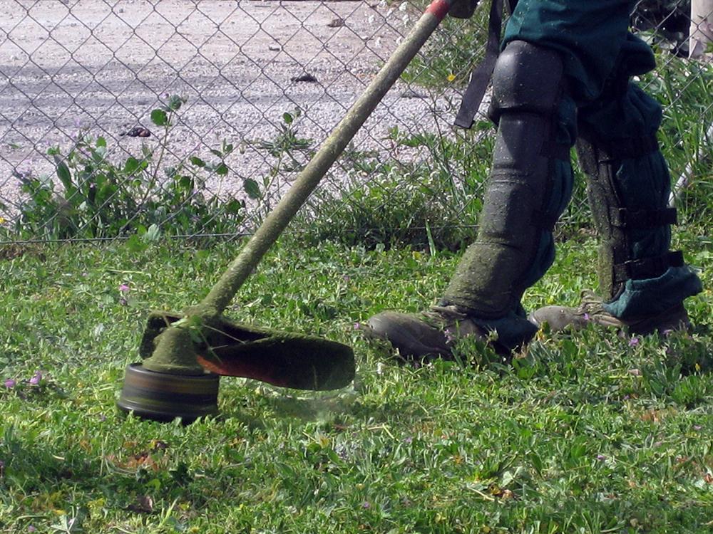 mas_alborna_jardineria