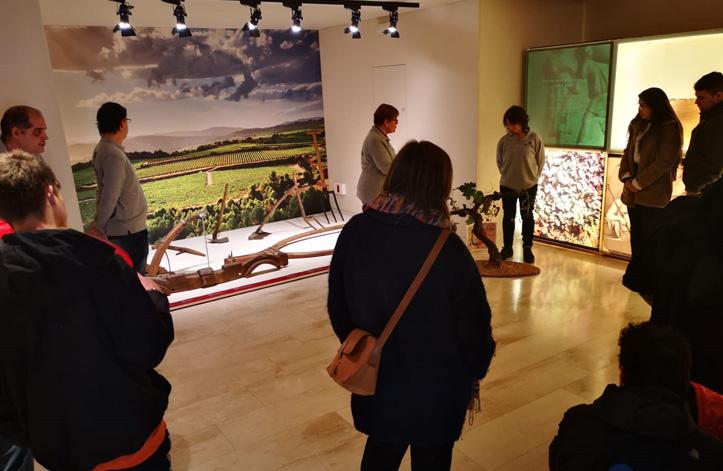 Celebrem el Dia Internacional del Museus