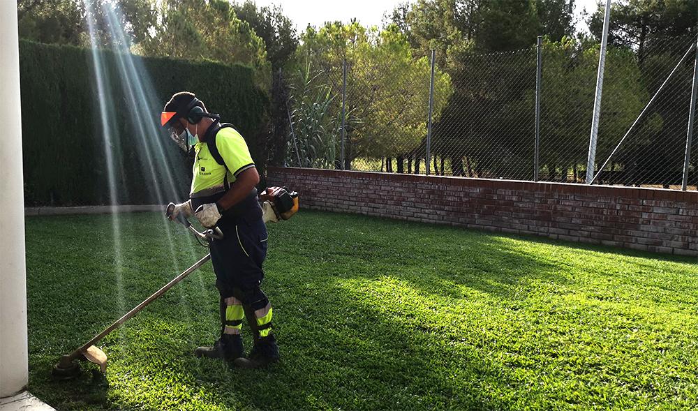 Creix la nostra activitat en el servei de jardineria